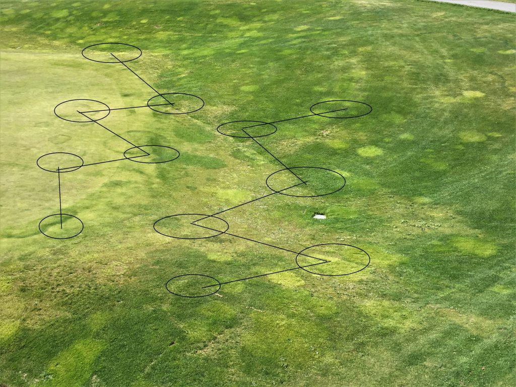 toma de muestras suelo nematodos