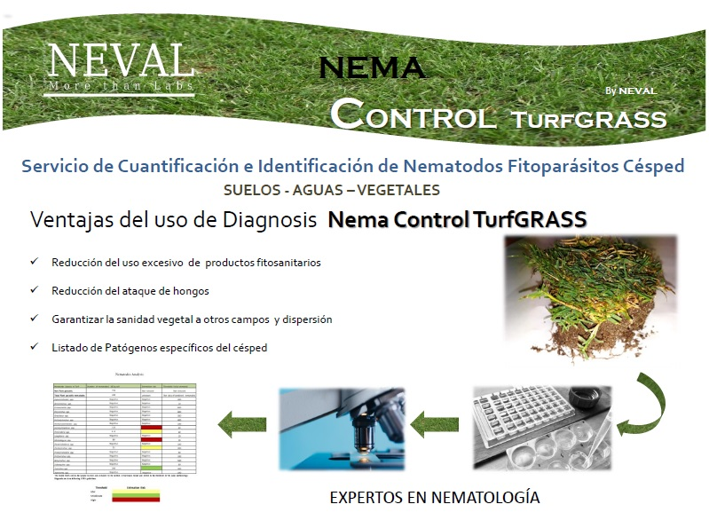 nematodes turf grass analysis