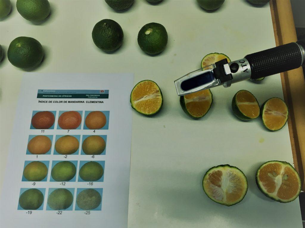 Parametros bioestimulantes