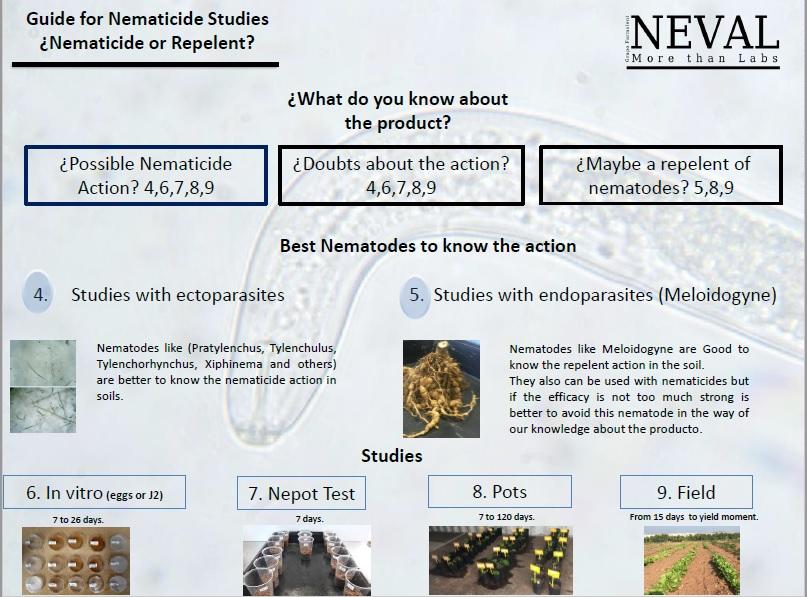 Nematicide studies nematodes