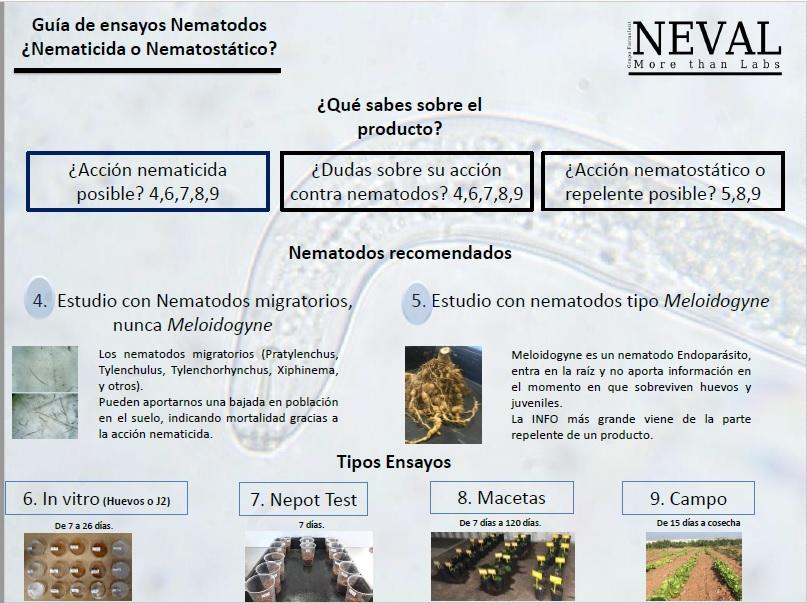 Guía estudios nematicidas y nematostáticos