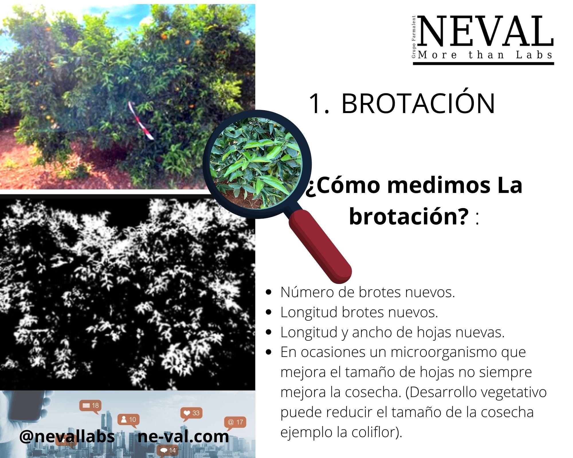 Empresa ensayos para registrar bioestimulantes españa