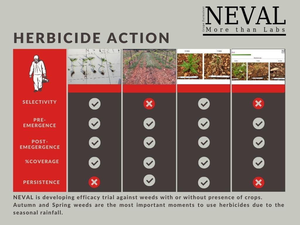 tipos de herbicida según la estación