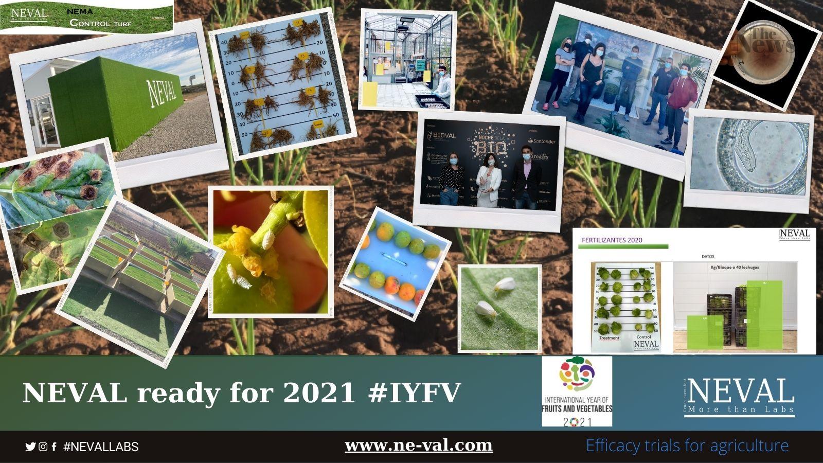 efficacy trials GEP IYFV best companies in spain. Empresa ensayos España